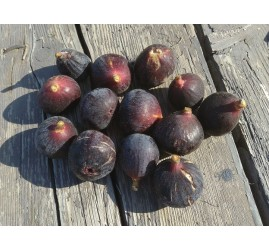 Figues rondes bio (500g)