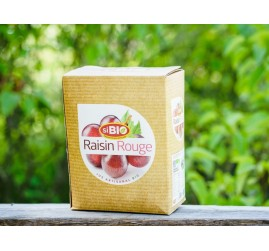 Bib raisins rouges bio (3L)